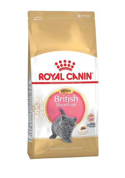 Royal Canin Kitten British Shorthair / Сухой корм Роял Канин для Котят породы Британская короткошерстная в возрасте от 4 до 12 месяцев
