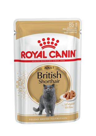 Заказать Royal Canin British Shorthair / Влажный корм (Консервы-Паучи) Роял Канин для кошек породы Британская короткошерстная по цене 670 руб