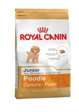Заказать Royal Canin Poodle Junior / Сухой корм Роял Канин для Щенков породы Пудель в возрасте до 10 месяцев по цене 290 руб