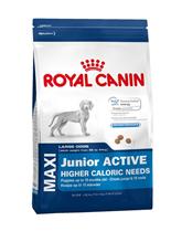 Заказать Royal Canin Maxi Puppy Active / Сухой корм Роял Канин Макси Паппи Актив для Щенков Крупных пород с Активным образом жизни в возрасте от 2 до 15 месяцев по цене 5040 руб