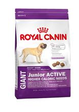 Заказать Royal Canin Giant Junior Active / Сухой корм Роял Канин Джайнт Юниор Актив для Щенков Гигантских пород с Активным образом жизни в возрасте от 8 месяцев до 2 лет по цене 4450 руб