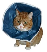 Kruuse / защитный воротник для кошек и маленьких собак мягкий