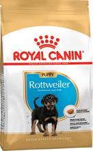 Royal Canin Breed dog Rottweiler Puppy / Сухой корм Роял Канин для Щенков породы Ротвейлер в возрасте до 18 месяцев