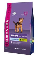 Eukanuba Puppy Large Breed / Сухой корм Эукануба для Щенков Крупных пород с Курицей