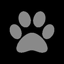 Savic Sphinx Impression / Туалет Савик для кошек Закрытый с Дверцей Черно-белый