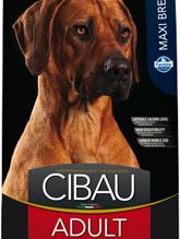 Farmina Cibau Adult Maxi / Сухой корм Фармина для собак Крупных пород