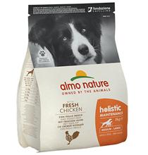 Almo Nature Holistic Medium Chicken / Сухой корм Алмо Натюр Холистик для взрослых собак Средних пород с Курицей