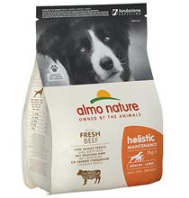 Almo Nature Holistic Medium Adult Beef and Rice / Сухой корм Алмо Натюр Холистик для взрослых собак Средних пород с Говядиной
