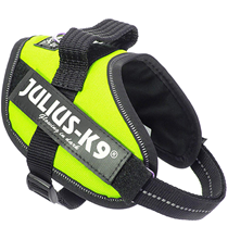 JULIUS-K9 IDC®-Powerharness / Шлейка Джулиус К9 для собак Зеленый неон