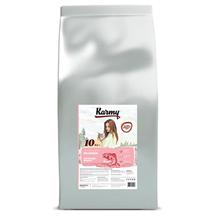 Karmy Delicious / Сухой корм Карми для взрослых кошек Привередливых в питании Лосось