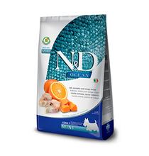 Farmina N&D Ocean Line Adult Mini Codfish Pumpkin Orange / Сухой Беззерновой корм Фармина для взрослых собак Мелких пород Треска с Тыквой и Апельсином