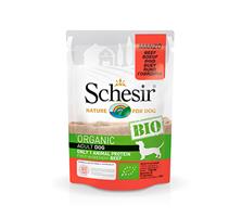 Schesir Bio Adult Beef / Паучи для собак Говядина (цена за упаковку)