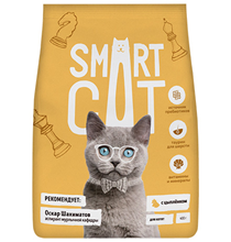Smart Cat / Cухой корм Смарт Кэт для Котят с Цыпленком
