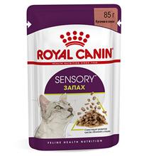 Royal Canin Sensory Запах / Влажный корм (Консервы-Паучи) Роял Канин для взрослых кошек в возрасте от 1 года до 7 лет, стимулирующий обонятельные рецепторы (цена за упаковку)