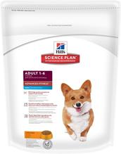 Заказать Hills Science Plan Adult Mini / Сухой корм для взрослых собак Мелких пород по цене 390 руб